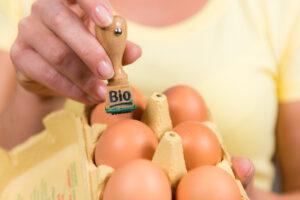 Eierstempel