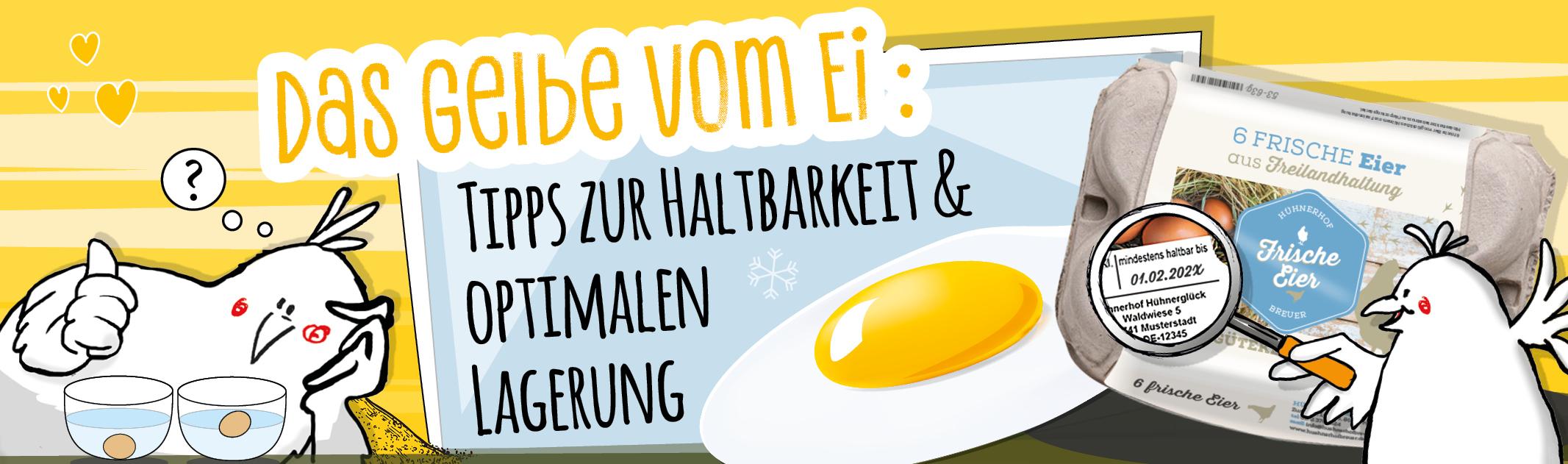 Das Gelbe vom Ei – Tipps zur Haltbarkeit und optimalen Lagerung