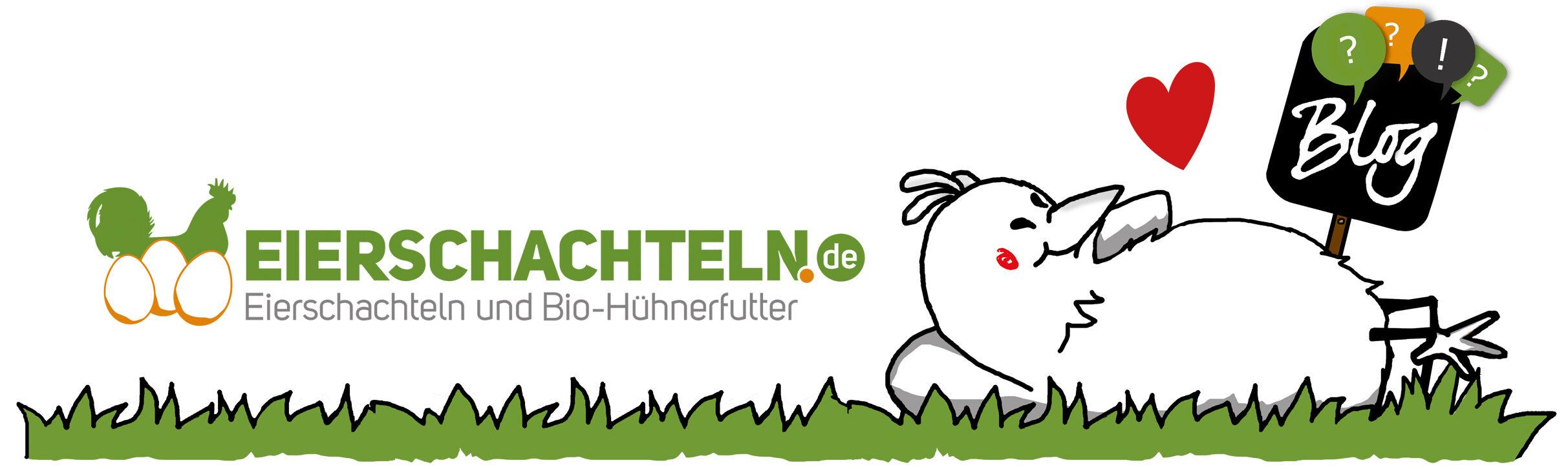 Der Blog von eierschachteln.de