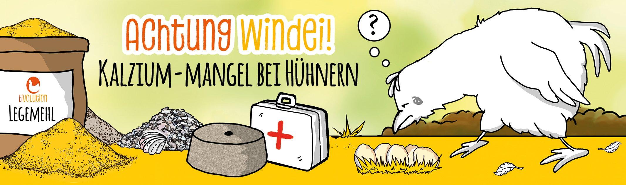 Achtung Windei! – Kalzium-Mangel bei Hühnern