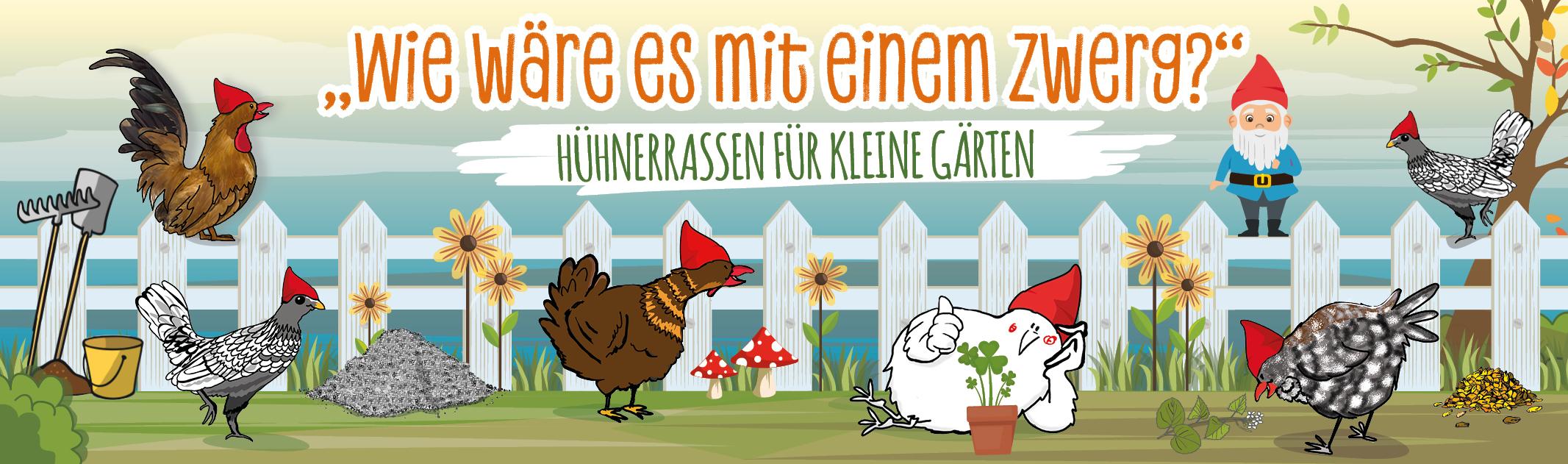 """""""Wie wäre es mit einem Zwerg? – Top 6 Hühnerrassen für kleine Gärten"""