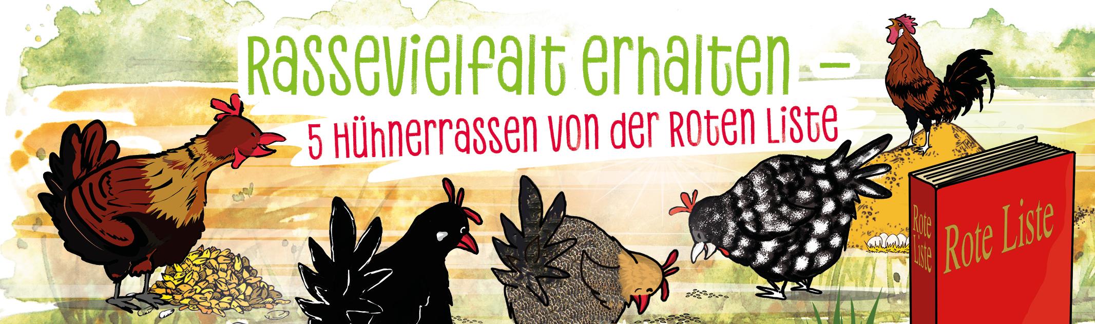 Rassevielfalt erhalten – Hühnerrassen von der Roten Liste