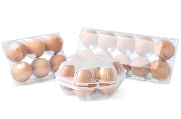 Musterset PET-Eierschachteln