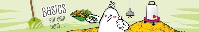Basics für die Hühnerhaltung
