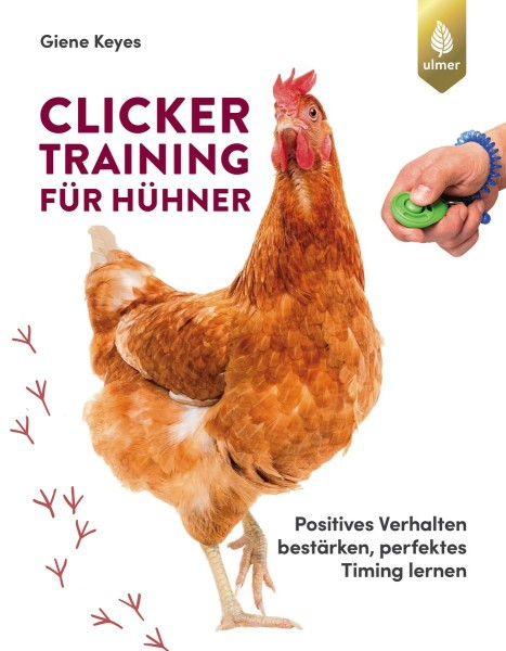 """Buch """"Clickertraining für Hühner"""" – Kunststücke lernen, Beziehung aufbauen"""