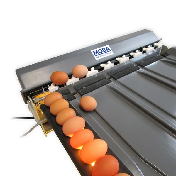 Eiersortiermaschine Mobanette 3 – vollautomatisch und auf ein Gramm genau