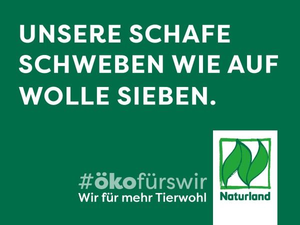 """Schild Naturland Haltungskampagne """"Unsere Schafe schweben wie auf Wolle Sieben"""""""