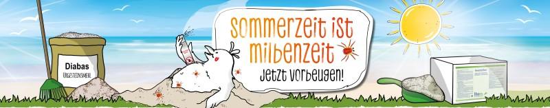 Jetzt handeln und gegen Milben im Hühnerstall vorbeugen!