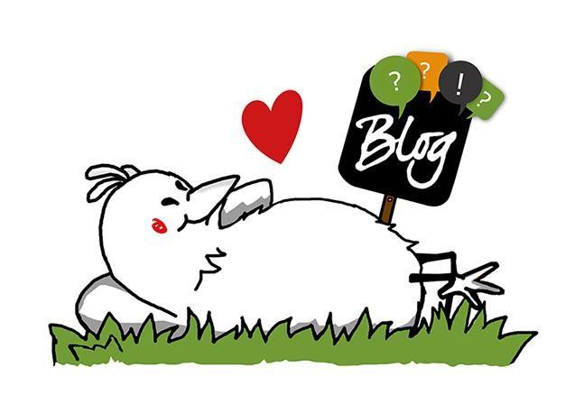 Anregungen und Wissenswertes rund um die Hühnerhaltung und Direktvermarktung gibt´s in unserem Blog