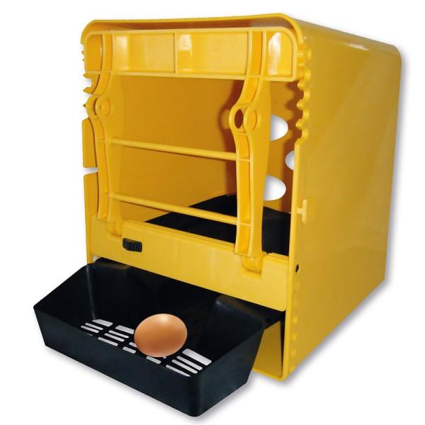 "Gelbes Legenes ""Chickbox"""