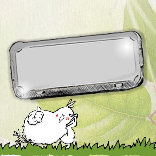 Flex-Paket: 300 Stück 10er Eierschachteln neutral