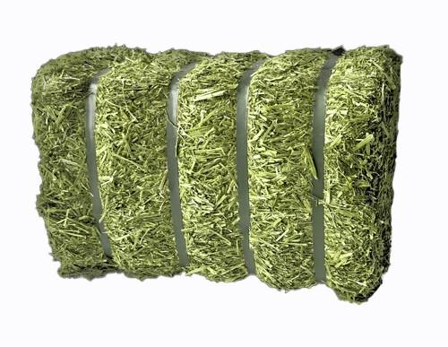 Bio Luzerneballen mit Bändern 20 kg für Geflügel – Beschäftigungsfutter