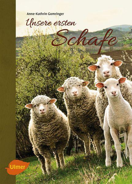 Unsere ersten Schafe eierschachteln.de