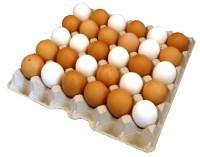 140 Stück 30er Eierpappen (für Größen S - XL) grau