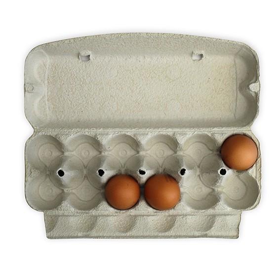 12er ComPac – die etwas größere Eierschachtel