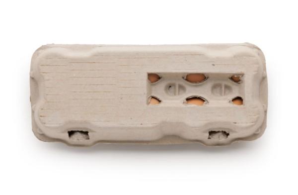 510 Stück 10er Eierschachteln mit Sichtfenster – versandkostenfrei