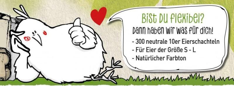 300 Stück 10er Eierschachteln zum Sonderpreis