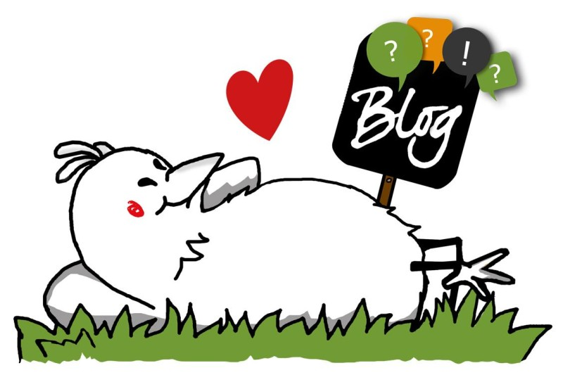 Hier geht´s zum Blog von eierschachteln.de