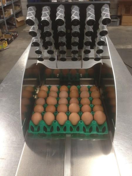 Eierstempel für 30 Eier - zur Eierkennzeichnung in drei Einschubvarianten (Egg-Flex)