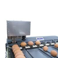 Eierstempel für Eiersortiermaschine von eierschachteln.de