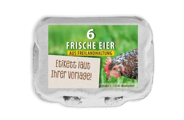 584 Stück 6er Eierschachteln TopCom mit eigenem Etikett im Vorteilspaket