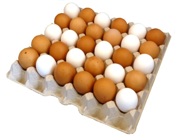 1 Stück 30er Eierpappe S bis XL