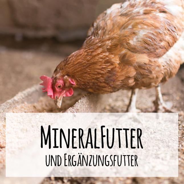 Biotaugliches Ergänzungsfutter und Mineralfutter für Geflügel